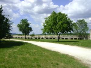 les-alentours-du-gte-les-oliviers 9069741148 o