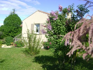 Parc et jardin fleuri
